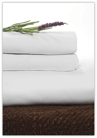 pure fiber viscose derived from bamboo sheet set cal king pure white