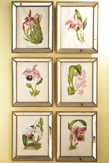 Home Decorators ORCHIDEES ORCHID WALL ART