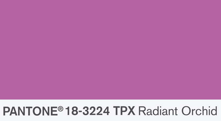 Radiant Orchid - Copy Cat Chic