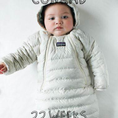 Conrad Weekly | 22 Weeks