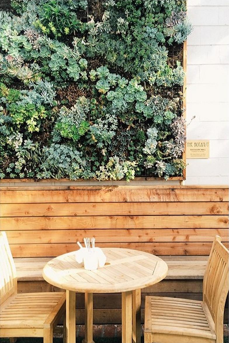 Outdoor Succulent Wall Copycatchic