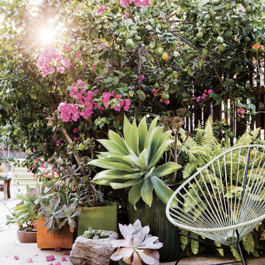 Designer Destination | Sunset Magazine Gardens