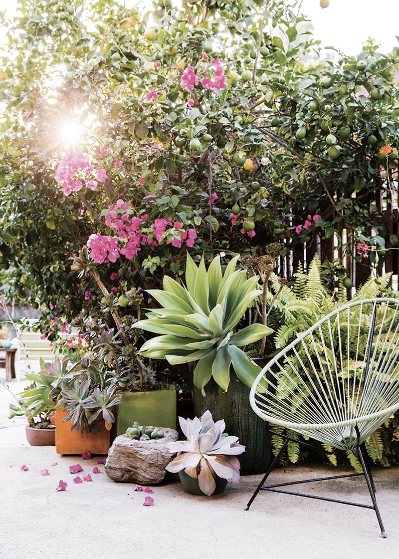Designer Destination Sunset Magazine Gardens Copy Cat Chic