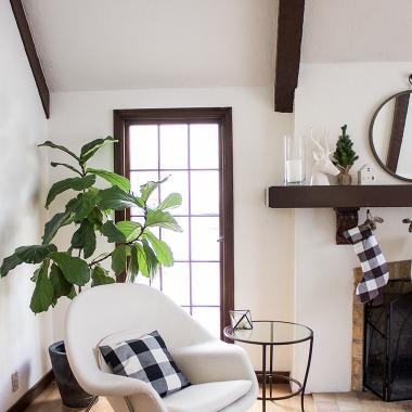 Home Trends | Buffalo Check