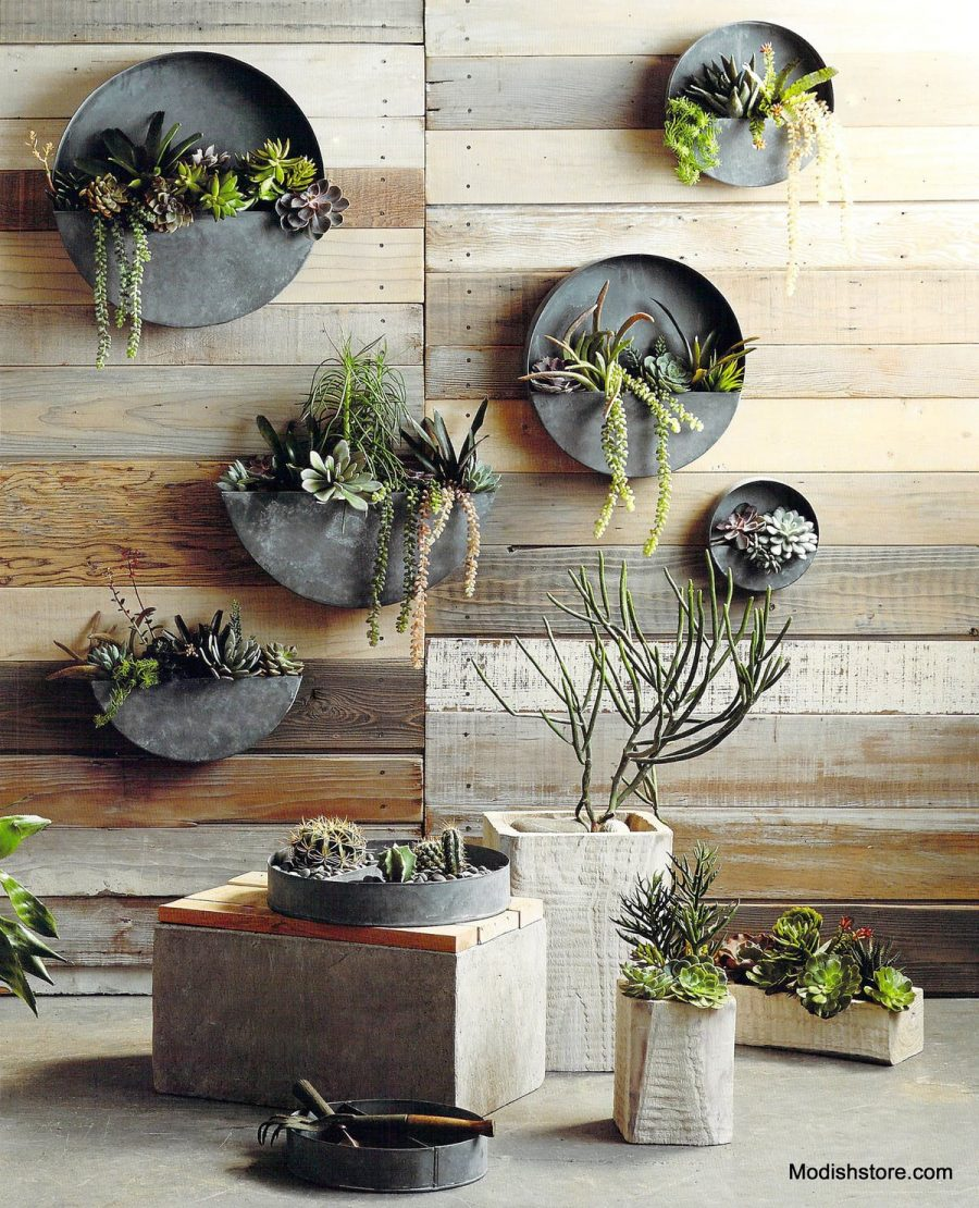 Terrain Divided Circle Wall Planter Copycatchic