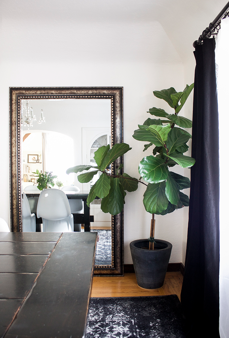 Pottery Barn Faux Potted Fiddle Leaf Fig Tree for $299 vs Michael's Artificial Fiddle Leaf Fig Tree for $50 copycatchic luxe living for less budget decor