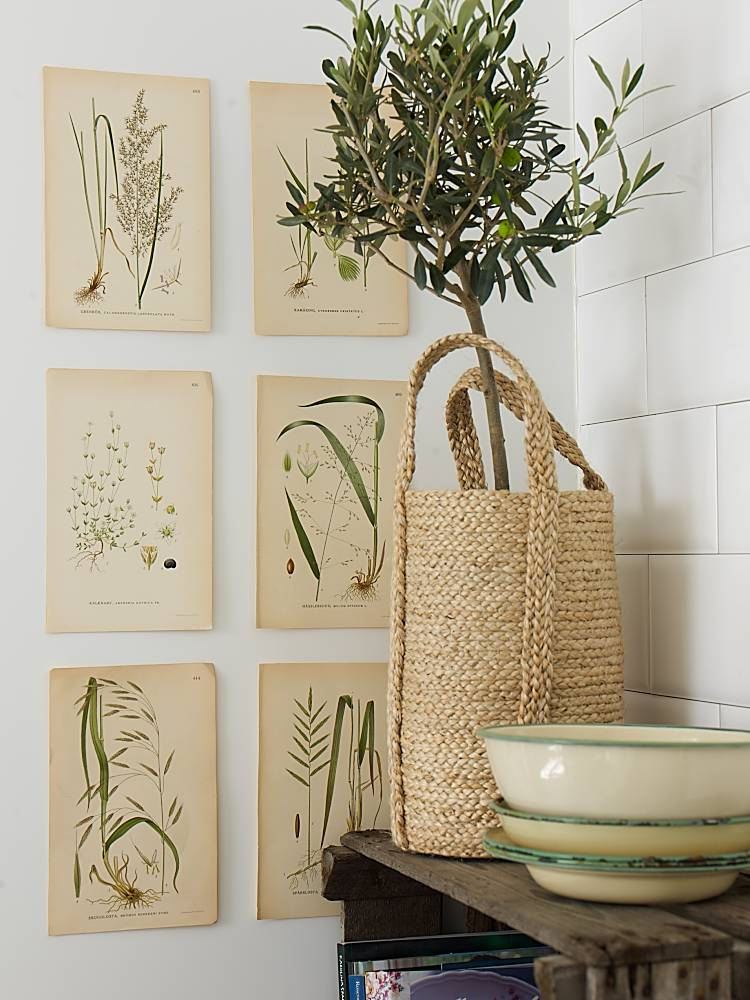 Ballard Designs Olive Tree Copy Cat Chic