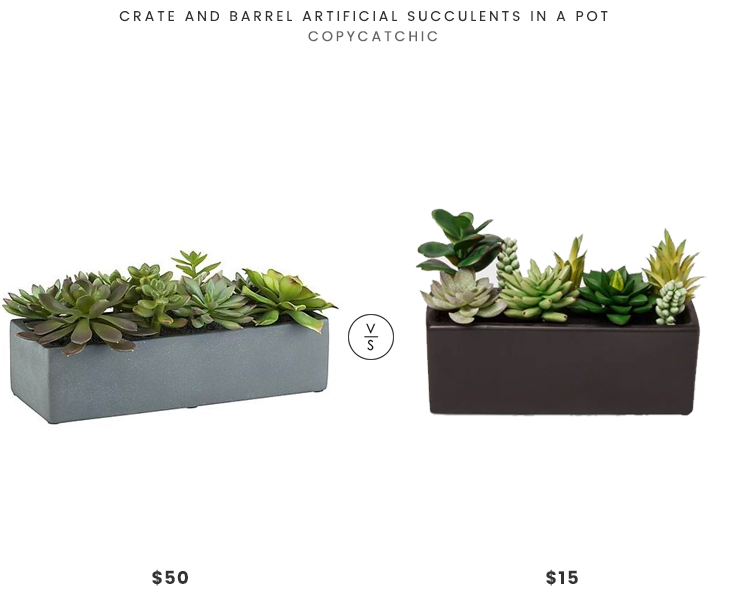 Crate and Barrel Artificial Succulents in a Pot $50 vs Target Project 62 Faux Succulents Plants in a Black Planter $15 modern succulent planter look for less copycatchic luxe living for less budget home decor and design daily finds, home trends, sales, budget travel and room redos