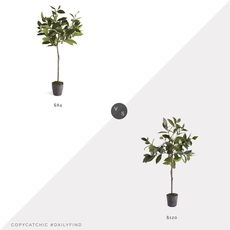 McGee and Co. Faux Bayleaf Tree $120 vs. Birch Lane Bayleaf Drop-In Tree Planter $84, faux bayleaf look for less, copycatchic luxe living for less, budget home decor and design, daily finds, home trends, sales, budget travel and room redos